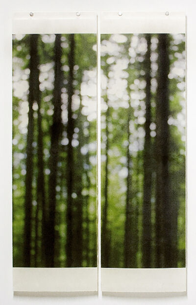 Jeri Eisenberg, 'Summer Greens (Trailside)', 2008