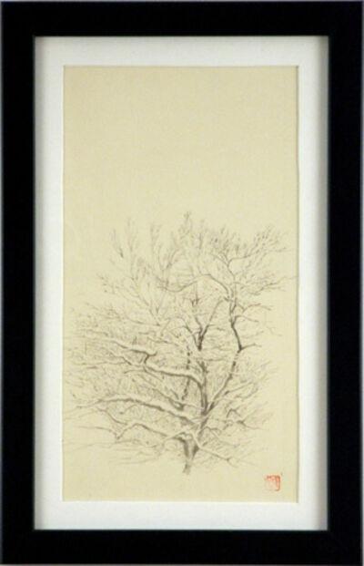 Hiro Ichikawa, 'Tree Study, Dogwood', 2009