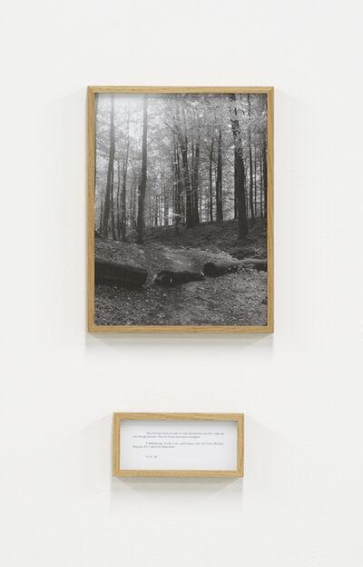 Ištvan Išt Huzjan, 'V drevesu [Inside a tree], from the series Performances', 2011
