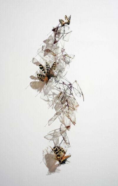Alan Bur Johnson, 'Progeny Fig. 11', 2012
