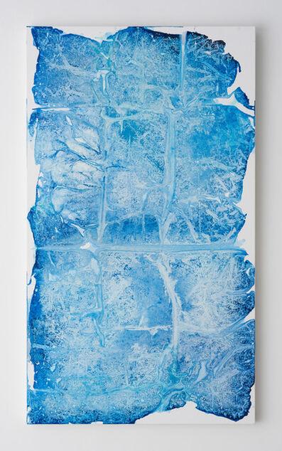 Rotem Reshef, 'Imprint#86', 2015