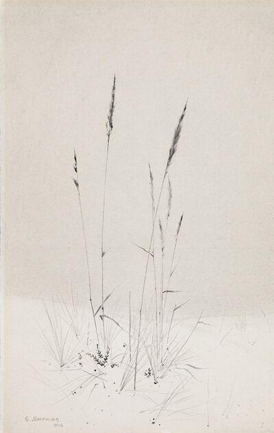 Gunnar Norrman, 'Calamagrostisstran', 1946