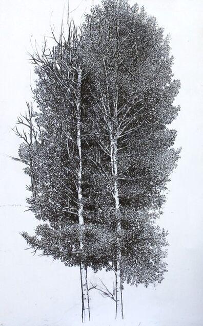 Sarah Myers, 'Aspen Tree', 2014