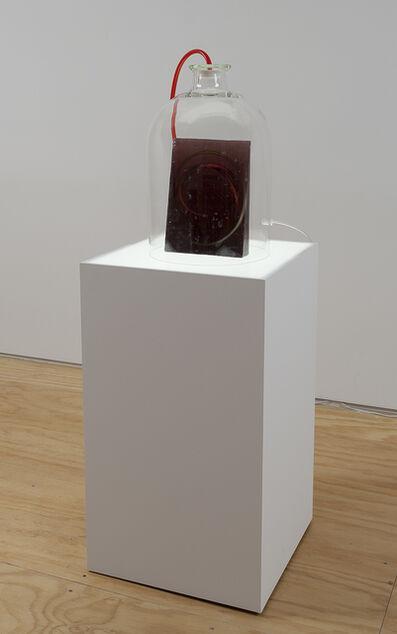 Anicka Yi, 'Bladder Burst', 2015