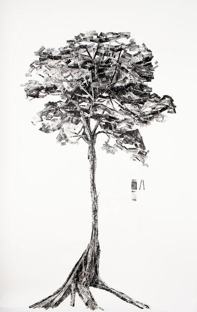 "Lucy Davis, '""Washboard Tree"" Mersawa / Anisoptera marginata', 2009"