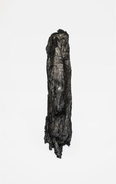 Erin Woodbrey, 'Fragment (Tree)', 2017
