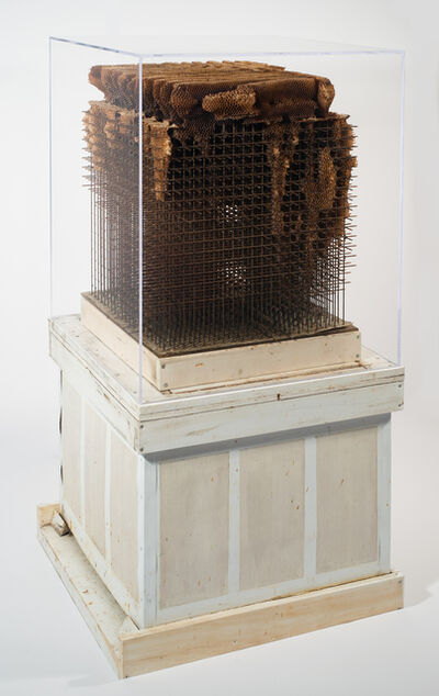 Hilary Berseth, 'Honeycomb Sculpture'
