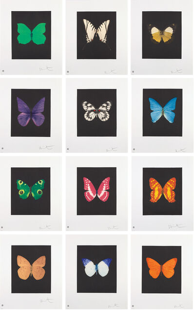 Damien Hirst, 'Butterfly Etchings', 2009