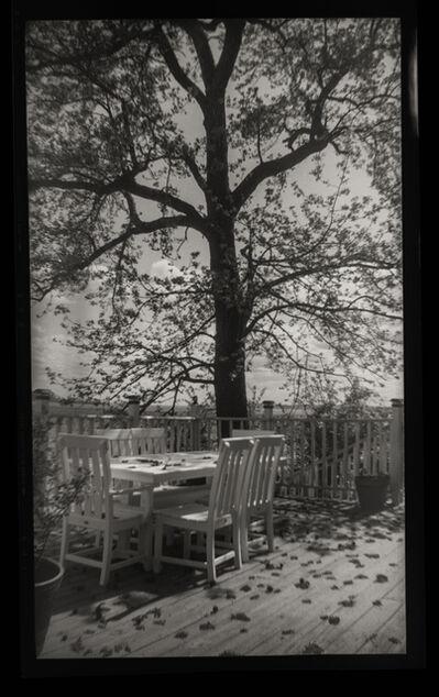 Sandy Rothberg, 'Gum Tree', 2019