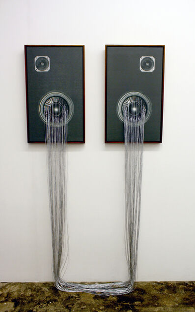 Sanell Aggenbach, 'In Stereo (Diptych)', 2011