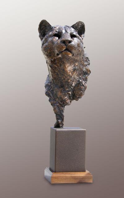 Peter Sawatzky, 'Stealth, Cougar Bust', 2016