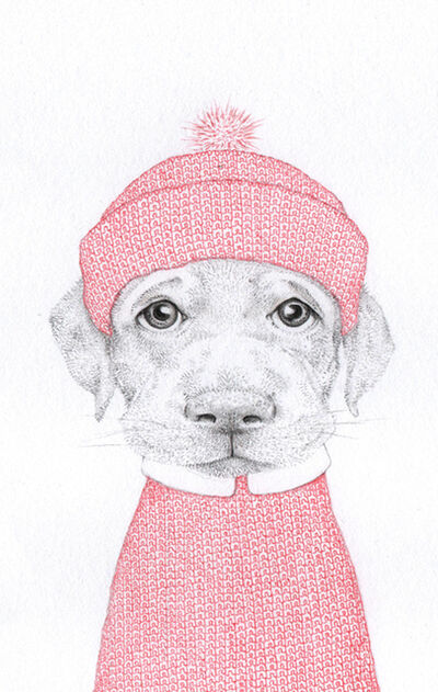 Jackie Case, 'Red Knitted Pup', 2020