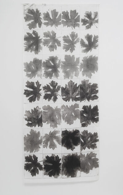 Nora Pauwels, 'Big Leaf Maple', 2015
