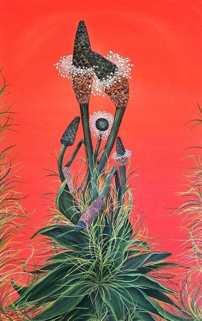 Allison Green, 'Buckhorn Plantains', 2012