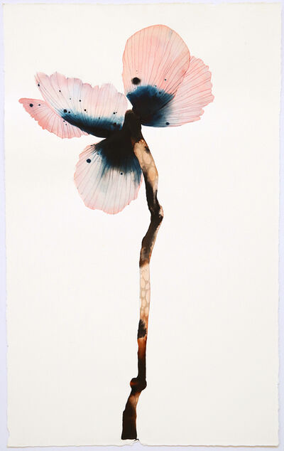 Stephen Doherty, 'Stemmed Flower I', 2018