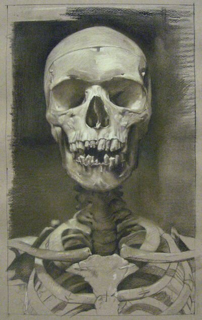 David Kassan, 'Anatomy Study in Sepia', 2012