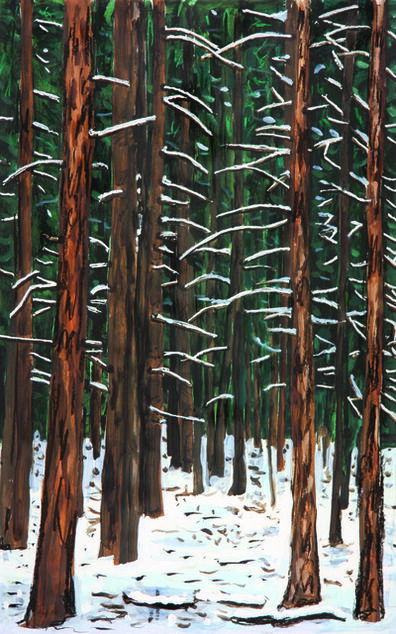 Richard Bosman, 'Deep Forest I', 2012