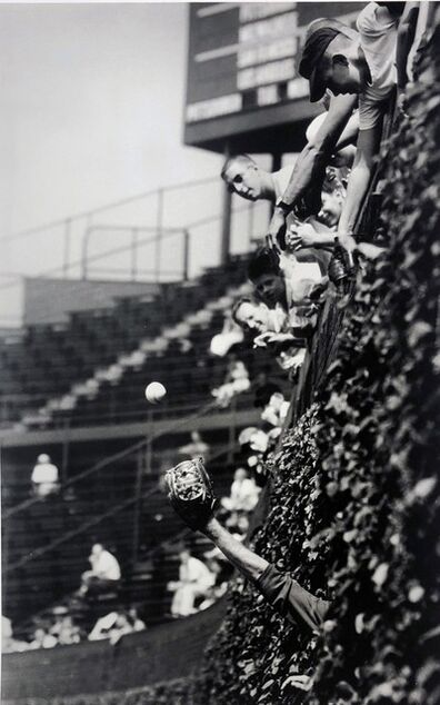 Art Shay, 'Catcher in the Vines, Wrigley Field, Chicago, 1961', 2017