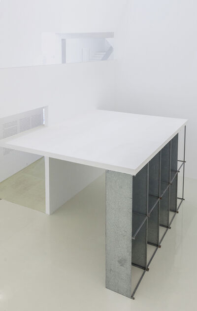 Benjamin Appel, 'Flowerbed in the Cellar 地下室花圃', 2017