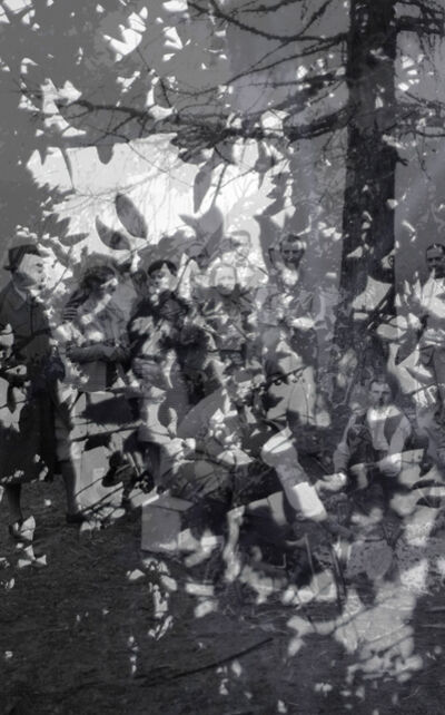 George Legrady, 'Day & Night: Trees', 2015