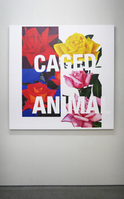 Cali Thornhill Dewitt, 'Caged Animal', 2015