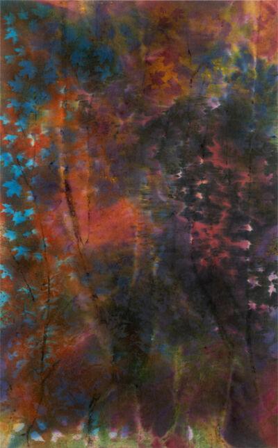 Sam Falls, 'Untitled (Laumeier 1, St. Louis, MI)', 2019