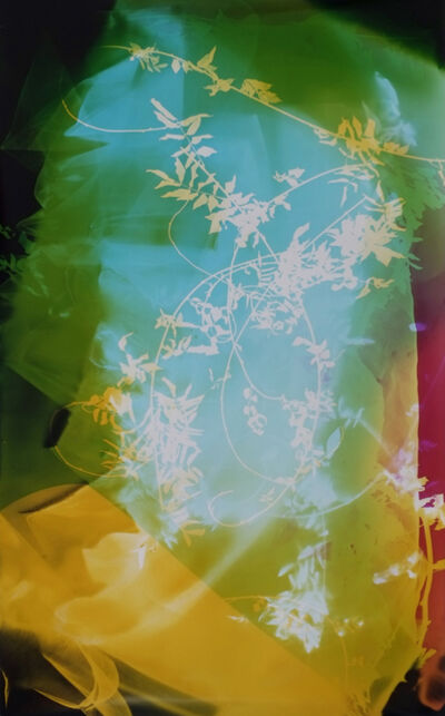 Bryan Graf, 'Field Recording (Sun Room IV)', 2016