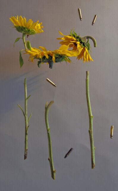 Natasha Dahnberg, 'Sunflowers', 2014