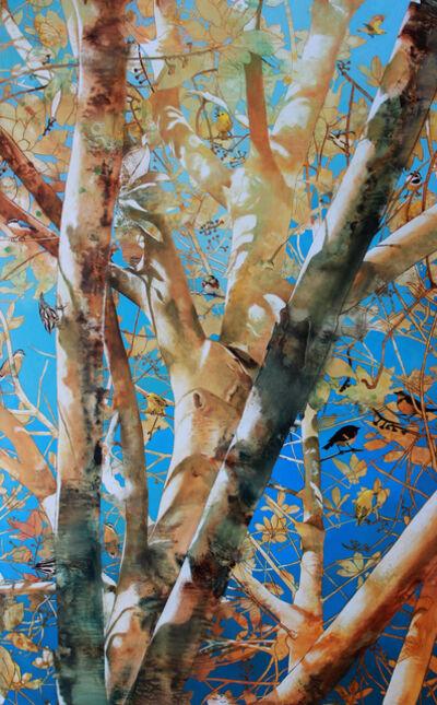 Kay Bradner, '14 Birds', 2017