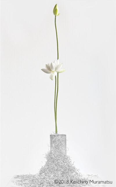 Keiichirô Muramatsu, 'Lotus 9', 2018
