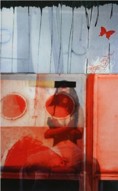 Silvia Poloto, 'The Crazy Pink is the Crazy Pink, a Red Rose, a Cry For More Than Flower Color', 2012