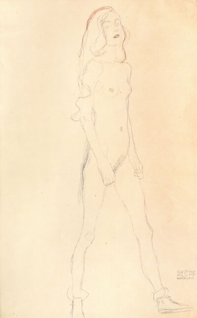 Gustav Klimt, 'Nude of a young girl (Red and blue pencil)', 1919