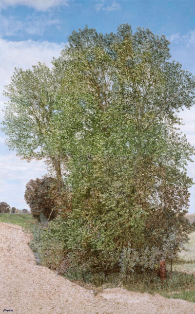 Jack Hoyer, 'Montana Detour Tree', 2014