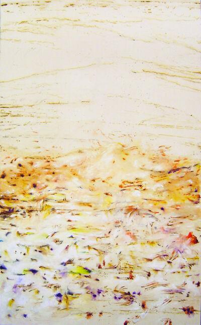 Hanibal Srouji, 'Terre Mer IX', 2011