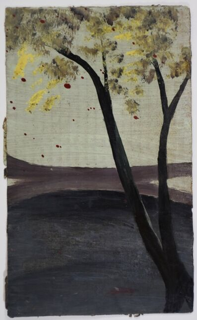 Frank Walter, 'Yellow Blossomed Tree'