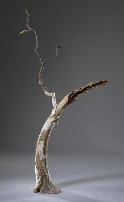 Eric Serritella, 'Southern Birch', nd