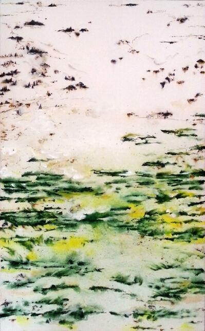 Hanibal Srouji, 'Cedars II', 2014
