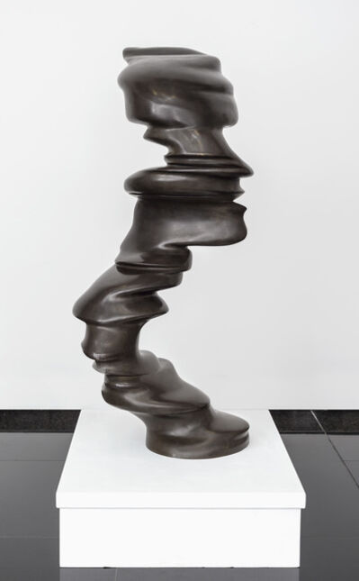 Tony Cragg, 'Small Faces', 2006