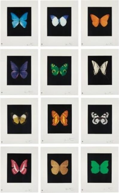 Damien Hirst, 'Butterfly (Portfolio of 12)', 2009