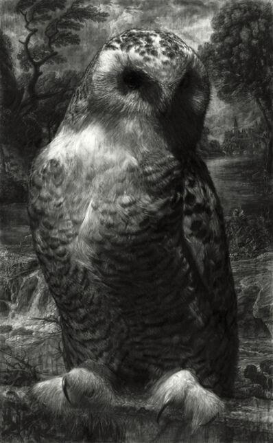 Tyler Vouros, 'Bubo Scandiacus (Snowy Owl)', 2019