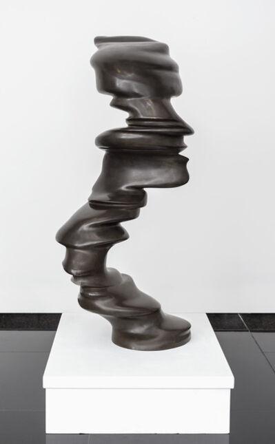 Tony Cragg, 'Small Faces', 2006