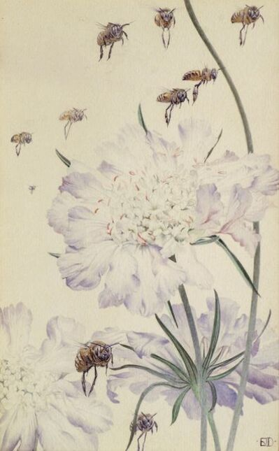 Edward Julius Detmold, 'Poppies', Coryanthes Maculata' and 'The Wrath of the Bees' from Maeterlinck's 'Hours of Gladness''