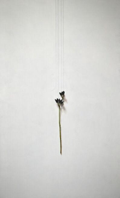 Daiya Yamamoto, 'Perle noire', 2020