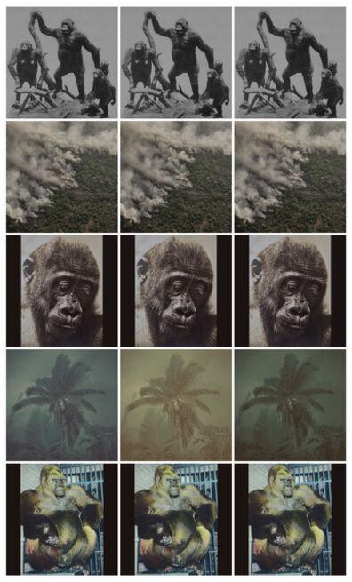Anett Stuth, 'Insta-Great Apes-Fragment', 2021