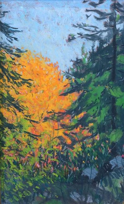 Robert Henri, 'Evergreen and Gold',