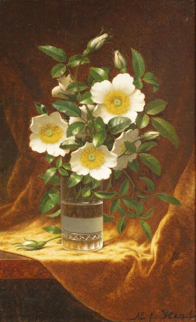 Martin Johnson Heade, 'Cherokee Roses in a Glass', ca. 1883-95