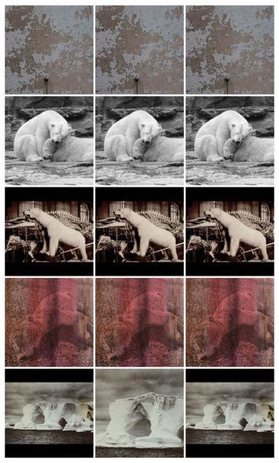 Anett Stuth, 'Insta-Polar Bears-Fragment ', 2021