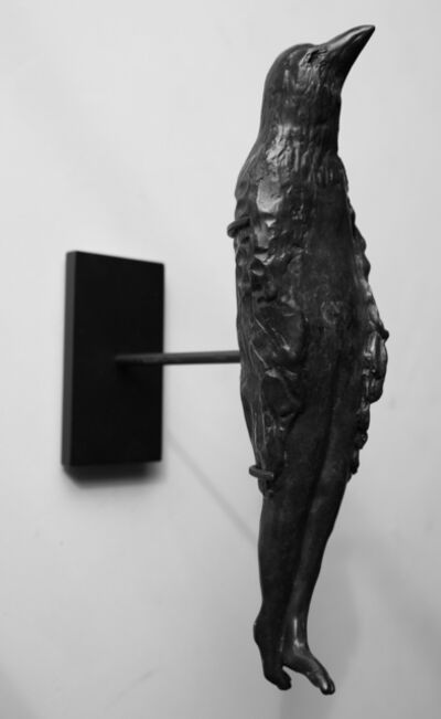 Catherine Eaton Skinner, 'Birdman', 2007