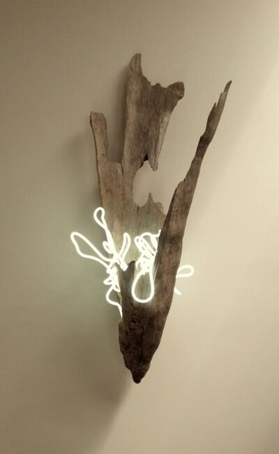 Lisa Schulte, 'Untitled Wood Series #7'