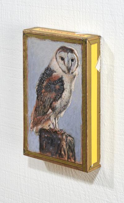 Ed Musante, 'Barn Owl / Montecristo', 2019